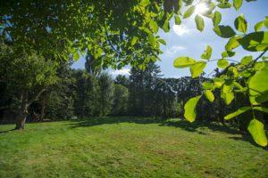großer Garten für Open Air Yoga
