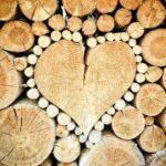Gestapelte Baumstämme, Herz in der Mitte