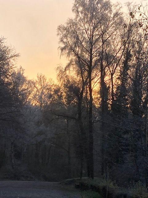Karlshöhe bei Sonnenaufgang im November